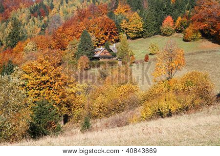 Cottage In Autumn