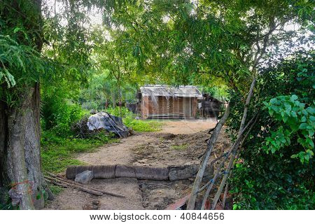 Poor Housing In The Jungle