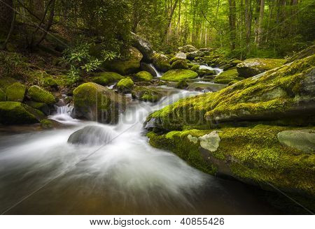 Great Smoky Mountains National Park Gatlinburg Tn Roaring Fork Waterfalls