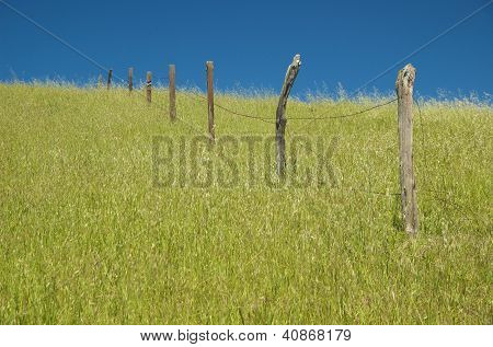 An old barbed wire fence stands alone in the grass