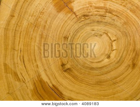 Wood Grain Background Texture