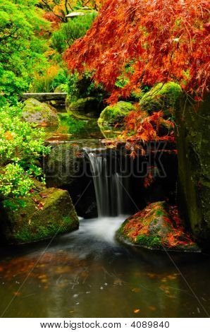 Autumn Colors And Waterfall