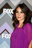 PASADENA, CA - 8 de JAN: Annie Parisse atende a FOX TV 2013 TCA inverno Press Tour no Langham volei
