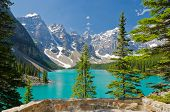 Fragment des Moraine Lake Trail in Lake Louise, Alberta, Kanada.
