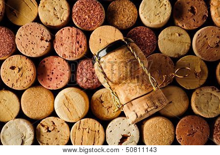 Wine Corks And Champagne Cork