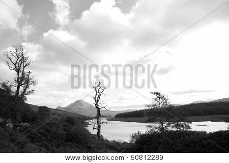Errigal Mountains And Countryside In Donegal