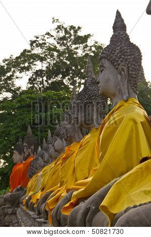 Tabulate Of Buddha Statues