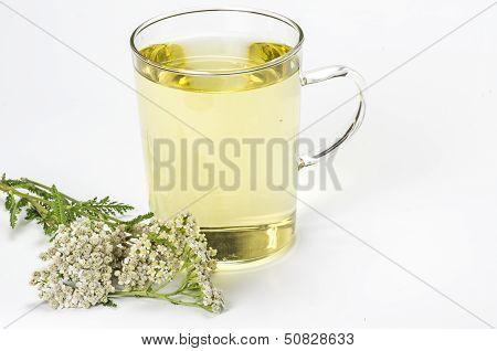 Glass mug with herbal tea