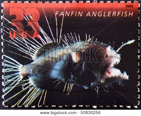 United States Of America - Circa 2000: A Stamp Printed In Usa Shows A Fanfin Anglerfish, Circa 2000