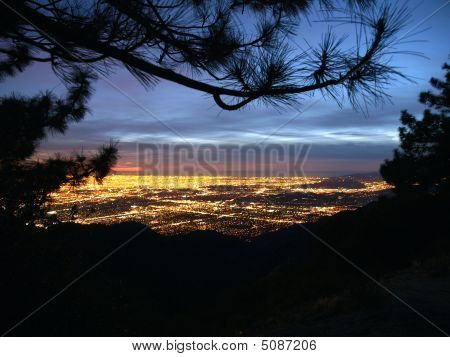Los Angeles From The Pines