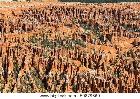 Hoodoos In Bryce Amphitheater, Bryce Canyon National Park, Utah