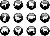 Farm Animals Buttons poster
