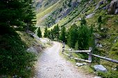 Rocky Trail Leading To Valley Surrounded By Forests And High Mountains In Swiss Alps, Switzerland.