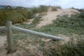 picture of fynbos  - wooden poles on a sandy path leading to the beach - JPG