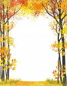 pic of cutting trees  - Frame composition with autumn trees on white background - JPG