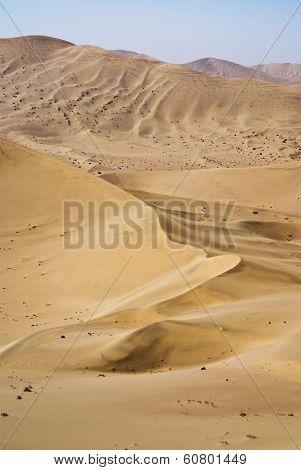 Sand Dune In The Gobi Desert
