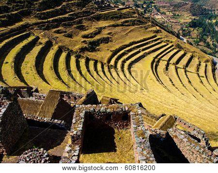 Terraces Of Pisac