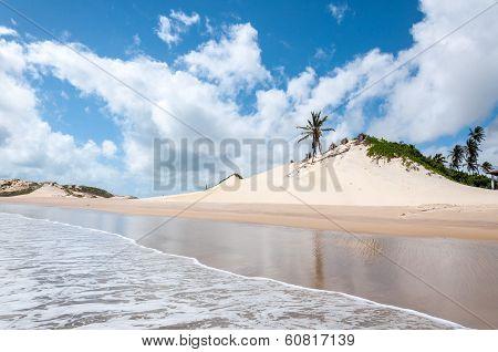 Sand Dunes, Pititinga, Natal (brazil)