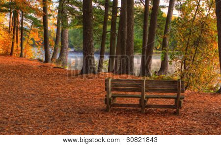 Colorful Scenic Landscape In Hdr Soft Focus