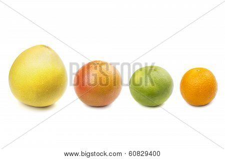Pomelo, Grapefruit, Sweetie, Orange