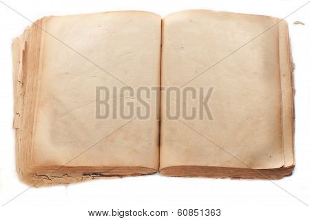 Two blank Pages in ancient Book