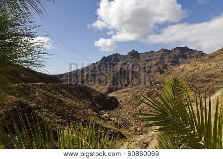 Vulcan Landscape at Gran Canary