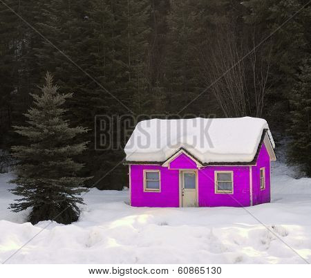 Heavy winter snow covering old pink house in forrest