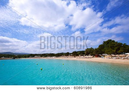 Ibiza Cala Bassa beach with turquoise Mediterranean sea at Balearic Islands