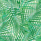 foto of fern  - A seamless pattern of green palm leaves  - JPG