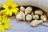 pic of jerusalem artichokes  - Tubers of Jerusalem artichoke and yellow flowers on burlap background and wooden boards - JPG