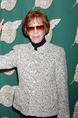 LOS ANGELES - FEB 28:  Carol Burnett at the 2014 Publicist Luncheon at Beverly Wilshire Hotel on Feb