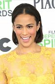 SANTA  MONICA - MAR 1: Paula Patton at the 2014 Film Independent Spirit Awards at Santa Monica Beach