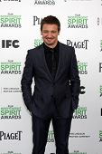 LOS ANGELES - MAR 1:  Jeremy Renner at the Film Independent Spirit Awards at Tent on the Beach on Ma