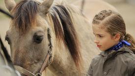 pic of horse girl  - Horse and lovely girl  - JPG