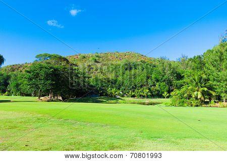 Grass Fairway Club