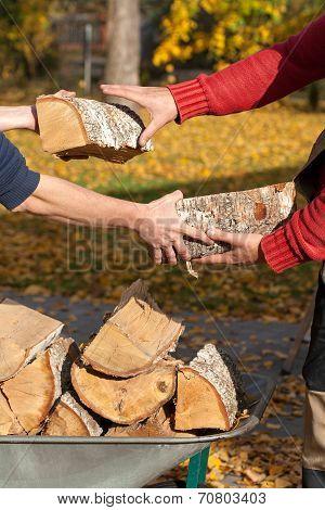 Family Wood Organising