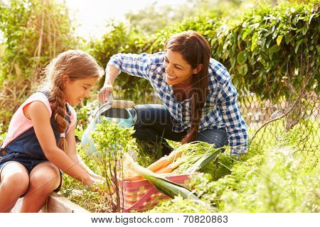 Mother And Daughter Working On Allotment Together