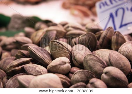 Mussels On Food Market Close Up 2