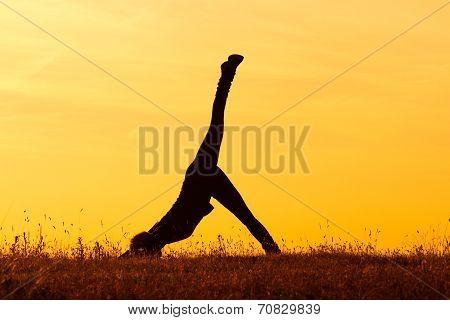 Yoga-Eka Pada Adho Mukha Svanasana One-Legged Downward-Facing Dog Pose