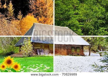 Four Seasons In One Photo