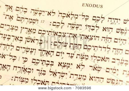 Passover Text Hebrew