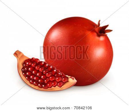 Pomegranate, vector illustration