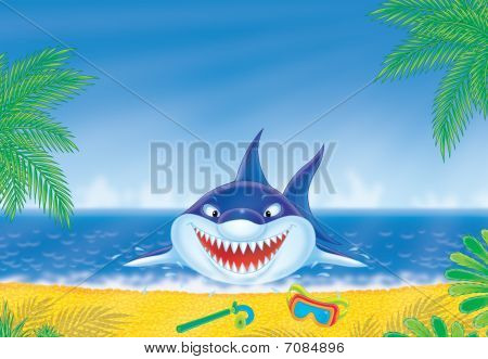 Great white shark on a beach