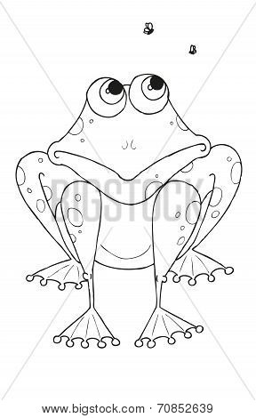 Frog with flys