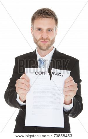 Angry Businessman Tearing Contract Paper
