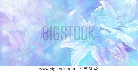 Wedding Bokeh Lillies Banner