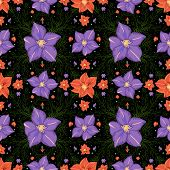 stock photo of gladiolus  - Illustration of seamless floral pattern with lilac and red gladioluses on black background - JPG