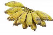 stock photo of banana  - Bananas Cultivated Banana Thai cultivated banana Thai bananas on on white background - JPG