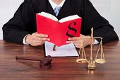 image of courtroom  - Midsection of male judge reading book at table in courtroom - JPG