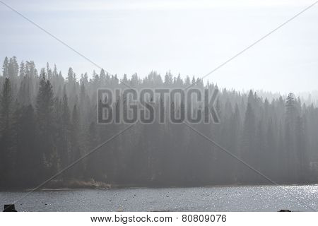 Hume Lake